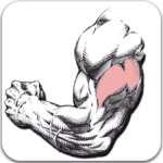 Gym Exercises & Workouts App