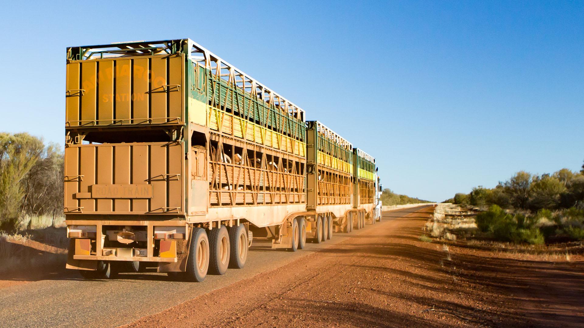 Gemtree, Australia - July 6 2015: An iconic 3 trailer Australian road train travels along the Plenty Hwy near Gemtree in Northern Territory, Australia